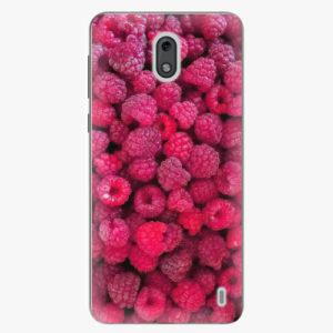 Plastový kryt iSaprio - Raspberry - Nokia 2