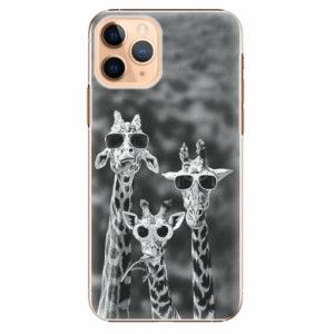 Plastový kryt iSaprio - Sunny Day - iPhone 11 Pro